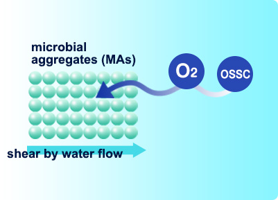 Wastewater treatment agent GENKI